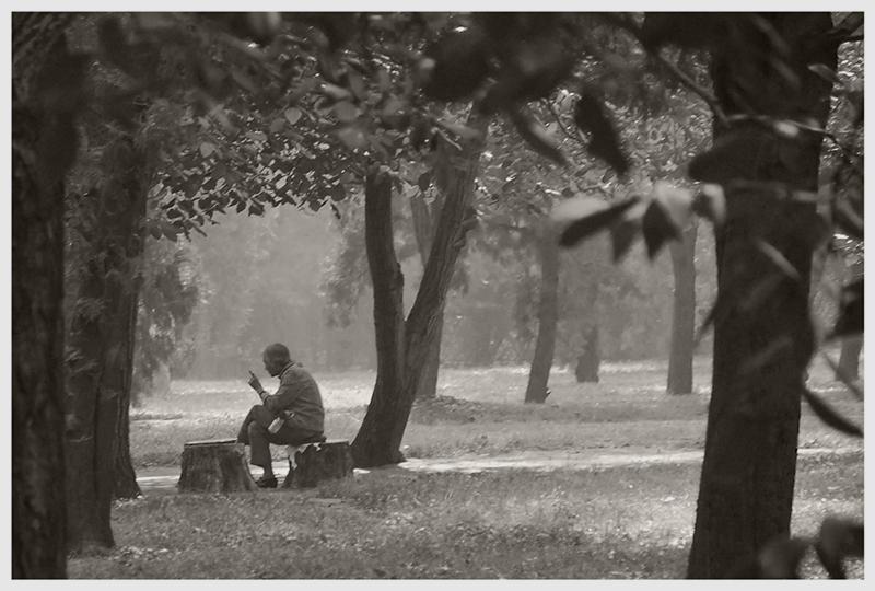 Solitude_resize