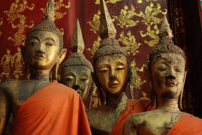 Curious buddhas